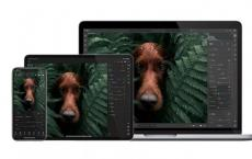 Adobe发布适用于Windows和macOS的Lightroom Arm版本